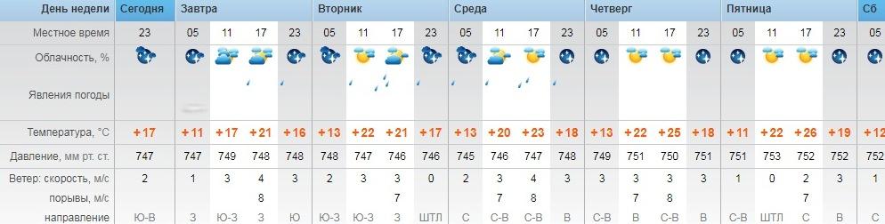 Государственной погода в оренбург на неделю на гисметео свежую лисичку