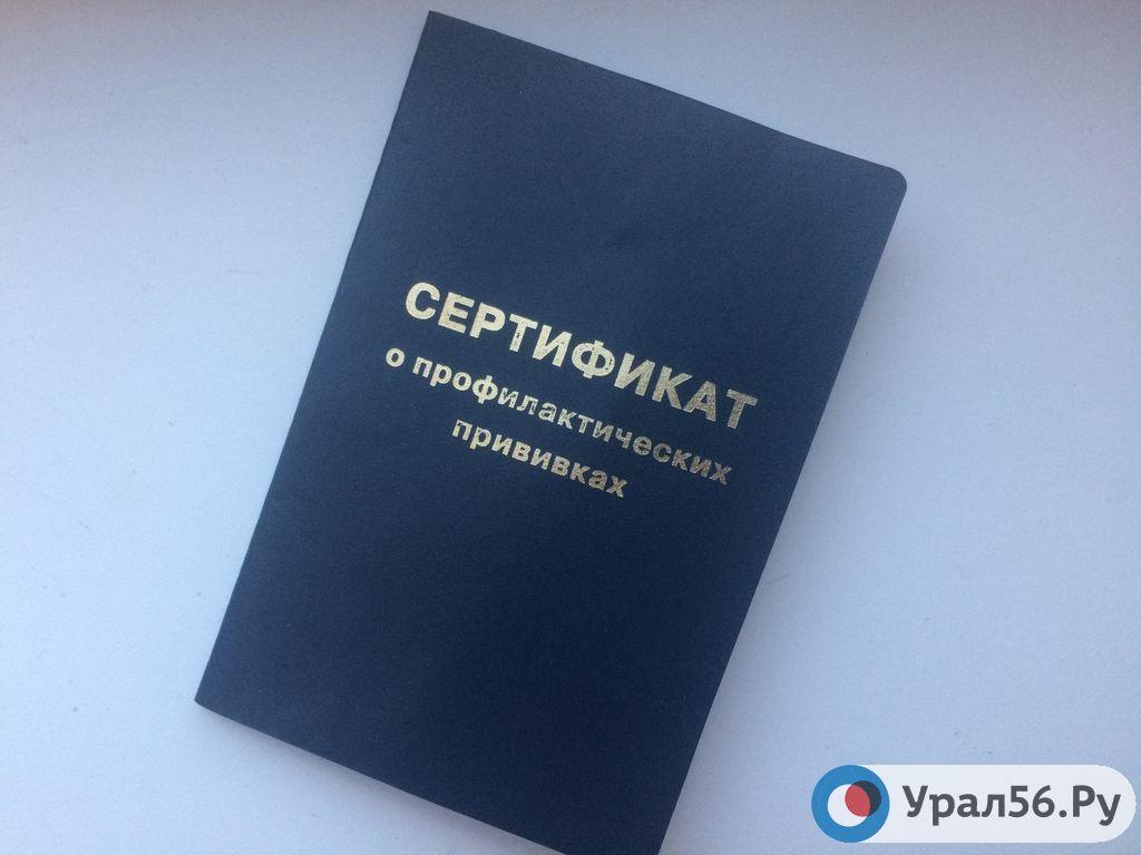 сертификат о прививках фото