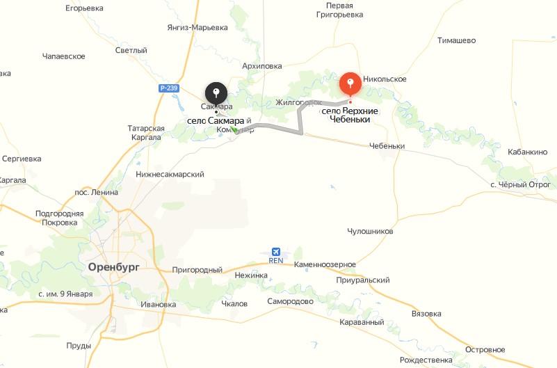Восстановлением лесополосы в Сакмарском районе за 2 млн рублей займется фирма с одним сотрудником