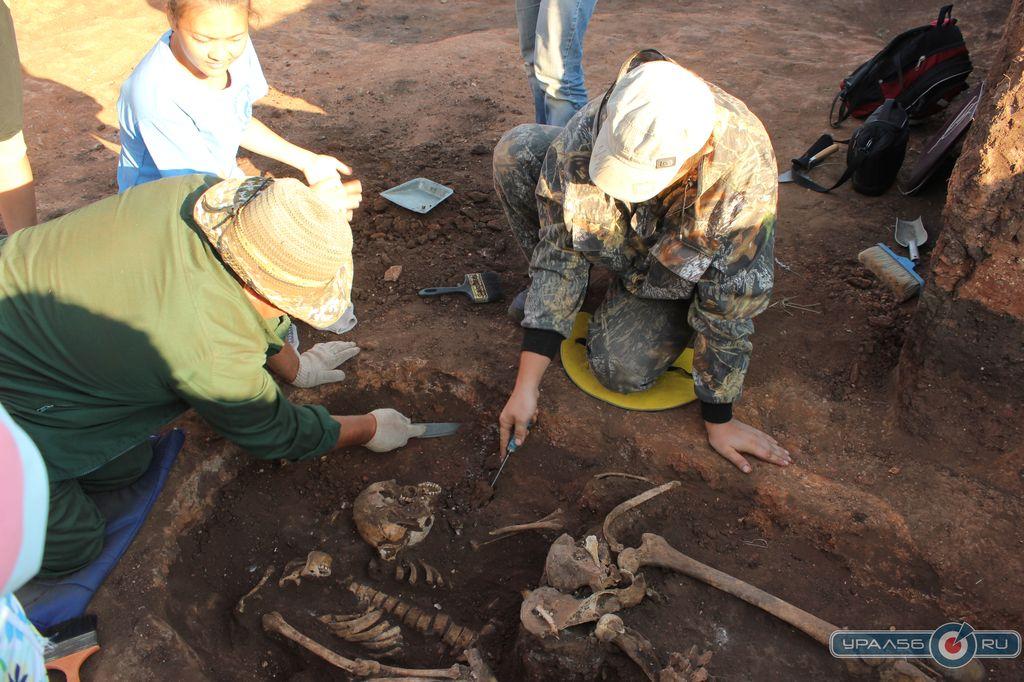 Орские студенты нашли останки сарматов :: урал56.ру. новости.