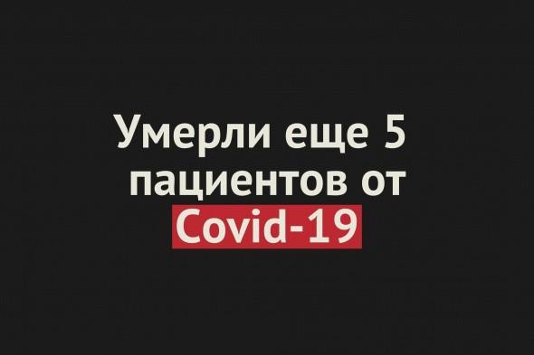Умерли еще 5 пациентов от Covid-19 в Оренбургской области. Общее число смертей — 376