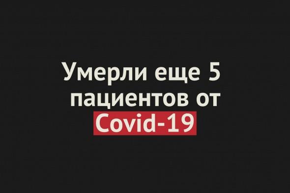 Умерли еще 5 пациентов от Covid-19 в Оренбургской области. Общее число смертей — 389