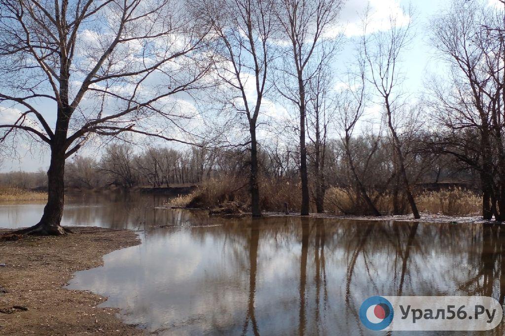 Ириклинское водохранилище уменьшило сброс воды в 2 раза, уровень Урала в Орске тут же начал падать